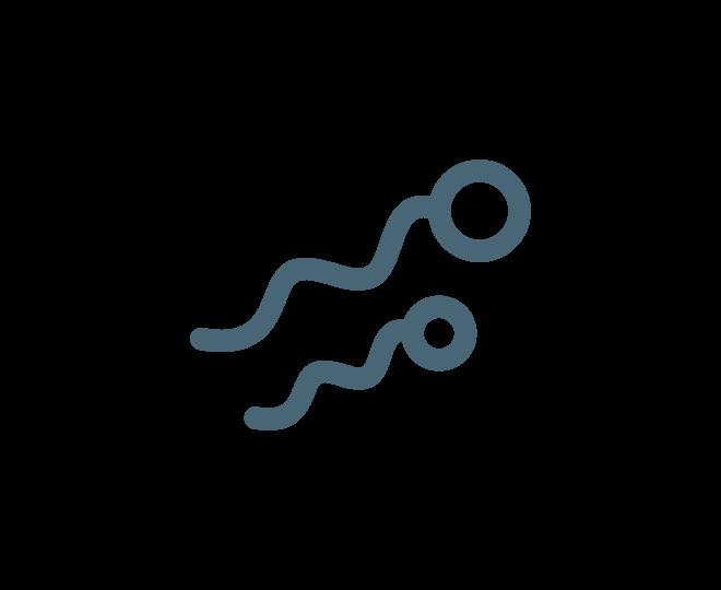 Сперма